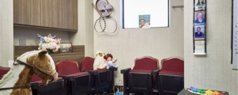 Port Washington - Little SmilesKids Reception Room